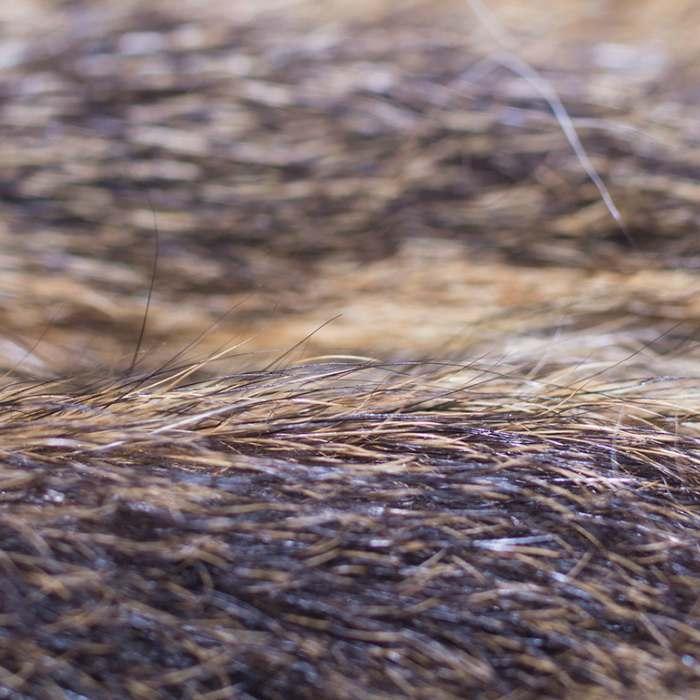 Hare Fur