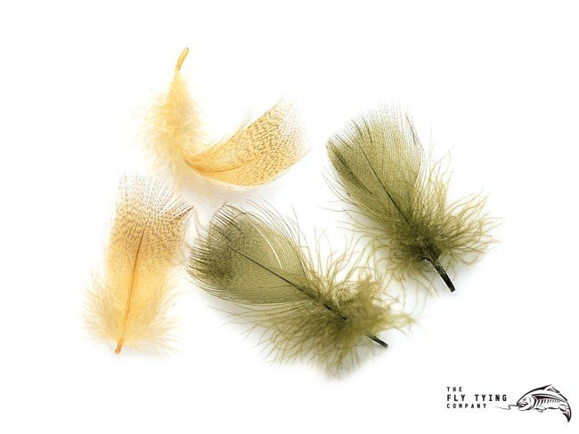 Mallard Duck Drake Round Breast  Fly Tying Feathers May Fly Wings