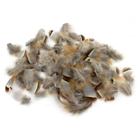 French Partridge Hackles