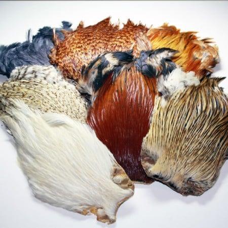 Indian Cock Capes - Grade A